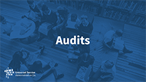 All Levels and Advanced Audits