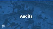 All Levels and Advanced Audits